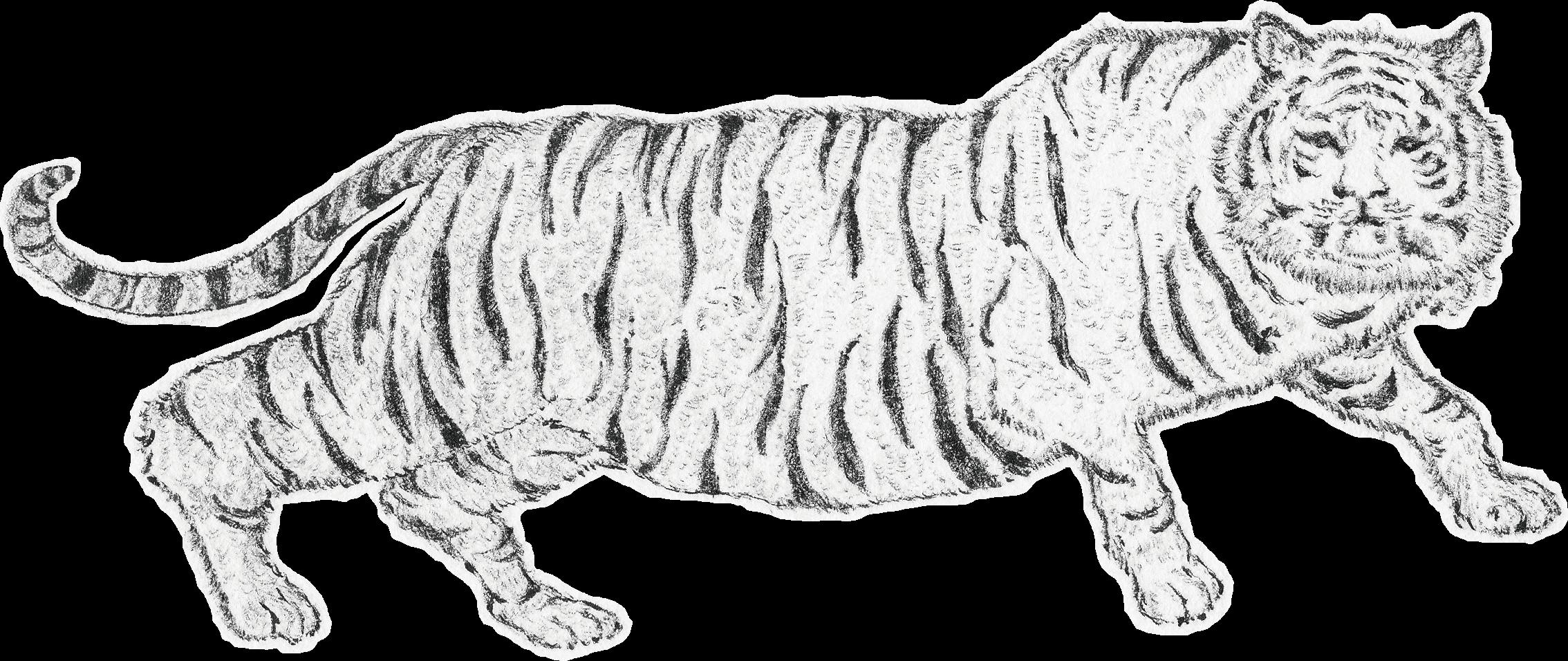 トラ(Tiger)